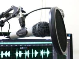 Mikrofonarm