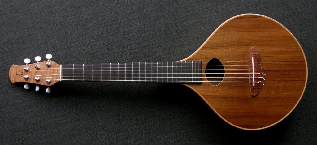Cittrn guitar